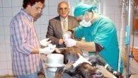 280 köpek aşılandı