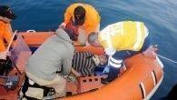 Falezlerden düşen balıkçı yaralandı