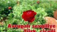 Avrupalı sevgiliye Türk çiçeği