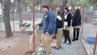 İSTEK'li Öğrenciler Hayvan Bakımevini Ziyaret Etti
