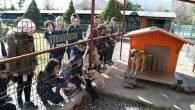 Konyaaltı'nda öğrencilere hayvan sevgisi