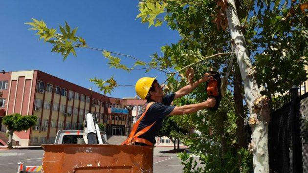 Muratpaşa'dan okullarda peyzaj çalışması