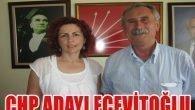 CHP Adayı Ecevitoğlu