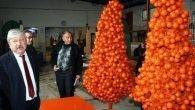 Yılbaşında Portakal ağacı